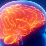 ¿Qué es el Neuromarketing?
