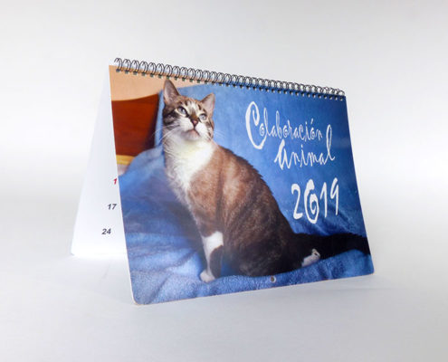 calendario solidario colaboracion animal