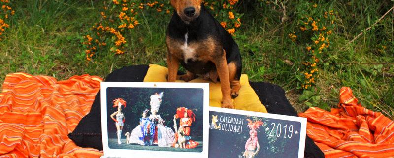 Impresión del Calendario Solidario 2019 de la Protectora de Animales Terra Viva