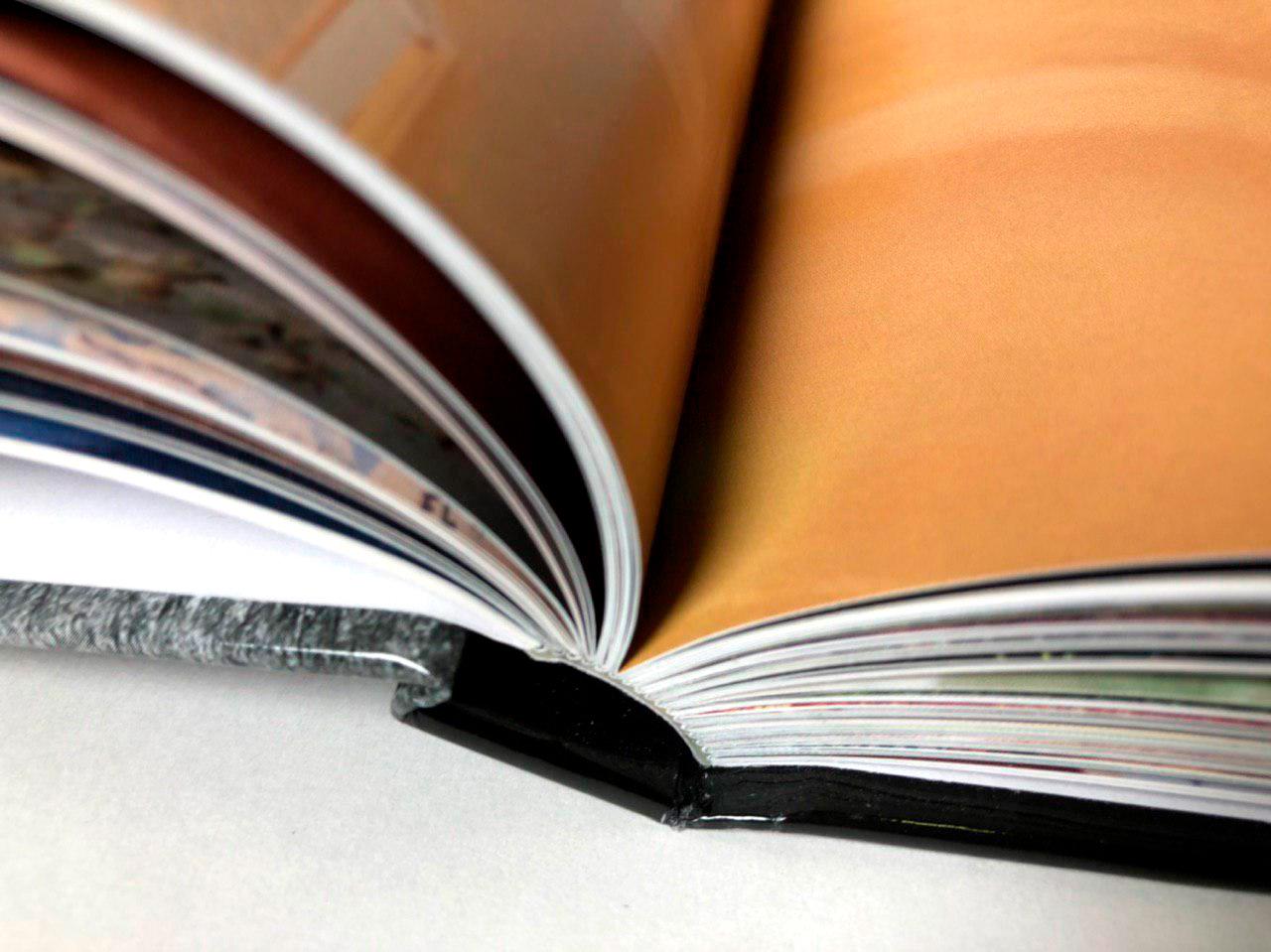 livre de voyage Sur la route de Potiron, récit d'un voyage pas ordinaire