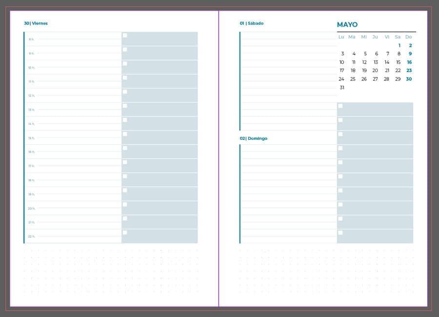 agenda diaria 2021