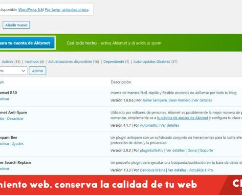 Mantenimiento web, la forma de conservar la calidad de tu página