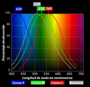 Resultado de imagen de Lo que permitía al ojo distinguir los colores eran esas diferencias entre longitudes de onda