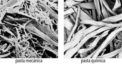 pasta-mecanica-vs-pasta-quimica