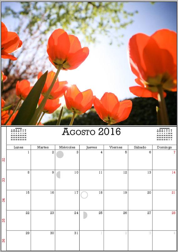 resultado calendar wizard