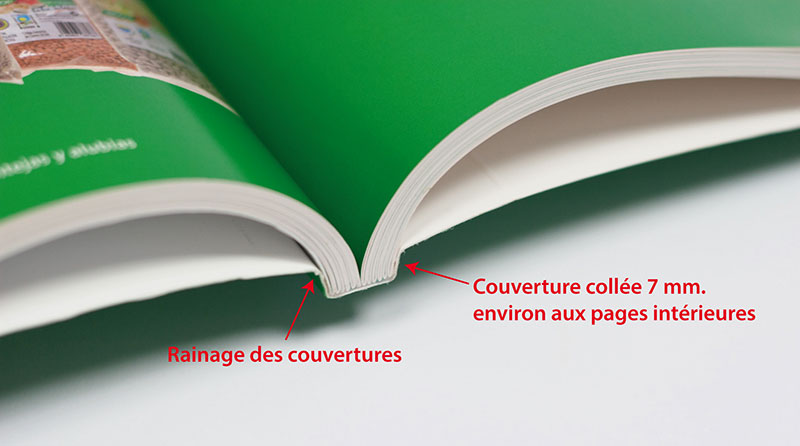 rainage-couverture-ok
