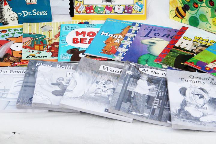 books-1005324_1280_720-ok